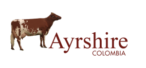 logo Ayrshire (1) (1)