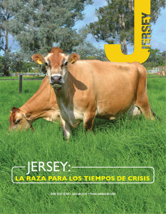 portada Jersey (1)